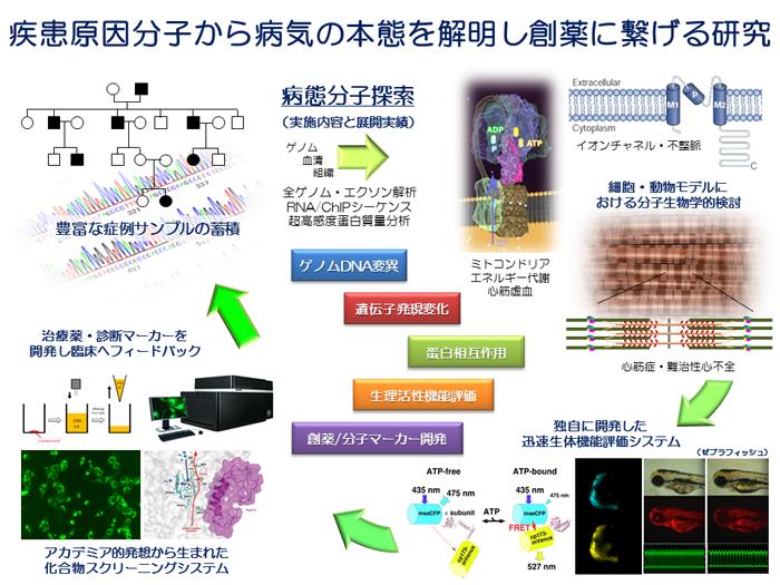 病態分子探索グループver4 (ポンチ絵)