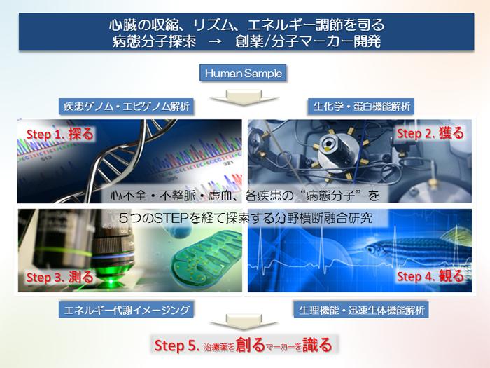 病態分子探索グループver4 1